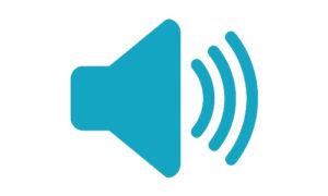 Audio: terugblik lokaal bestuur 2013